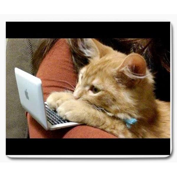 Katt med dator 1 musmatta