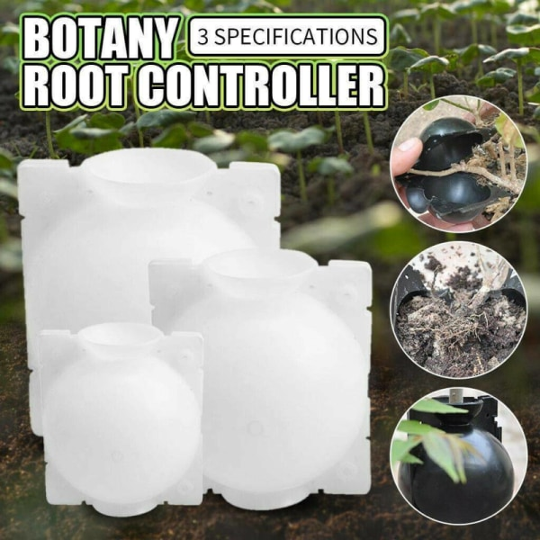 S / M / L Plant Rooting Ball Grafting Rooting Growing Box Breeding