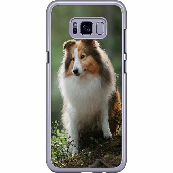 Samsung Galaxy S8 Plus Hard Case (Transparent) Collie Dog