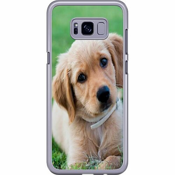 Samsung Galaxy S8 Plus Hard Case (Transparent) Hund