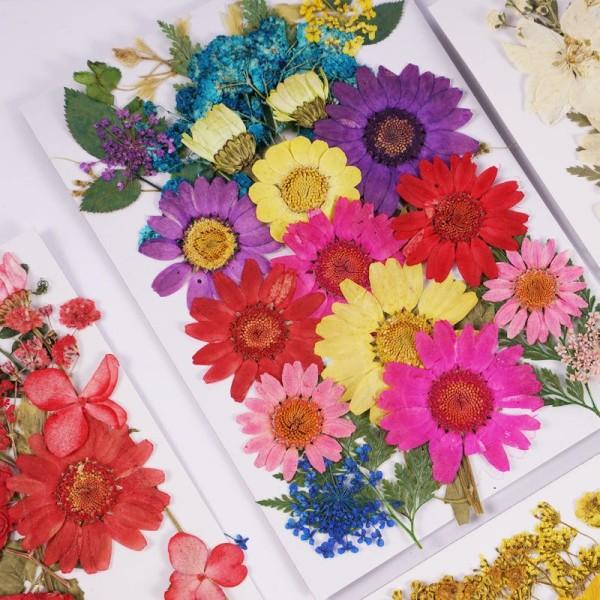 DIY torkade blommor harts mögel fyllningar UV Expoxy Flower Nail Art