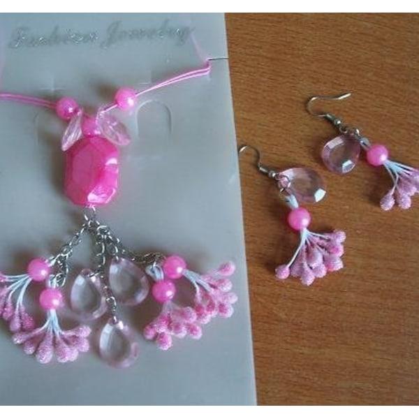 Halsband örhängen smycken LILA