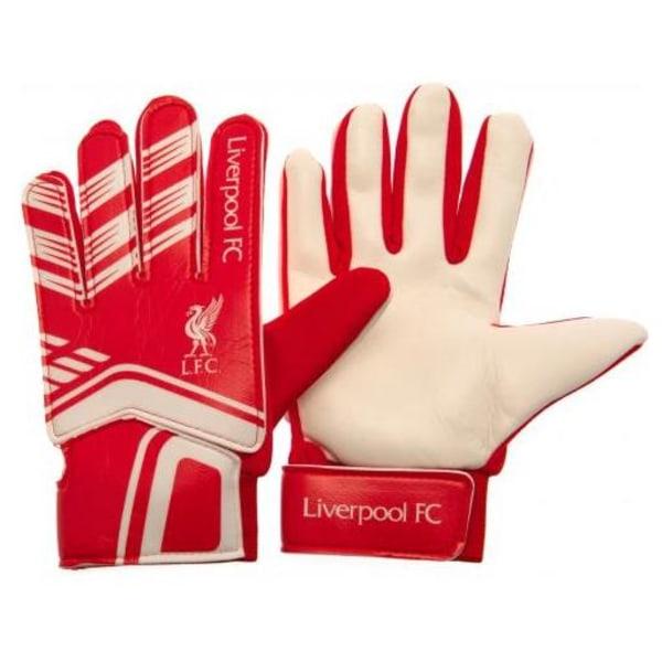 Liverpool Målvaktshandskar Youth