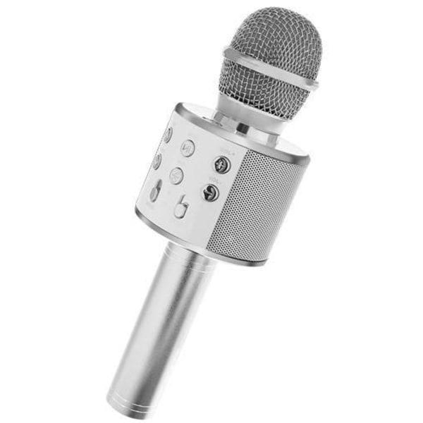 Karaoke mikrofon med högtalare Silver