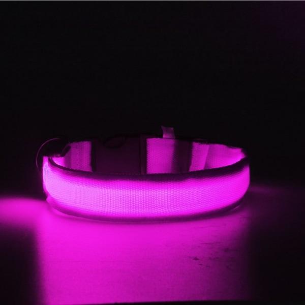 LED Pet Band - Small Rosa