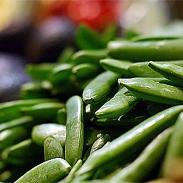 Brytsockerärt salladsärt (sugar snap) 15 ärtor