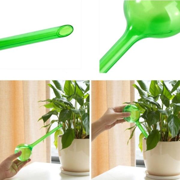 Blomma automatisk vattningsanordning krukväxtlök