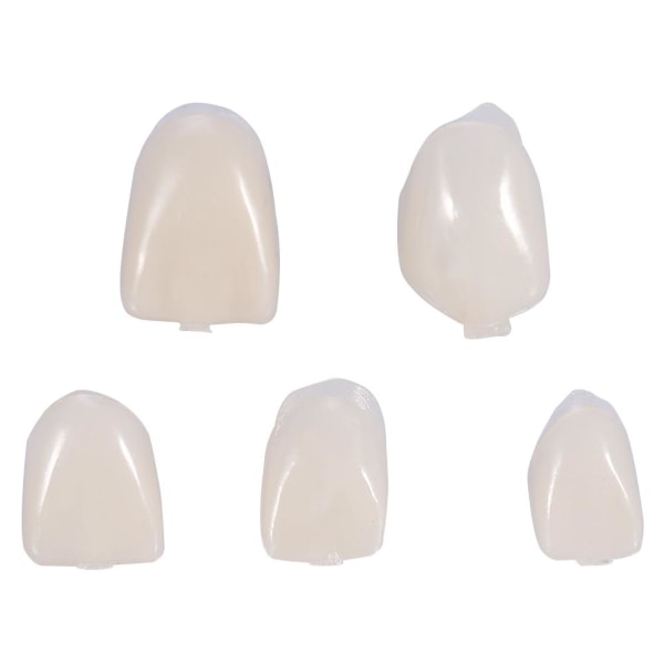 50Pcs/Box Dental Front Teeth Temporary Realistic Oral Care R