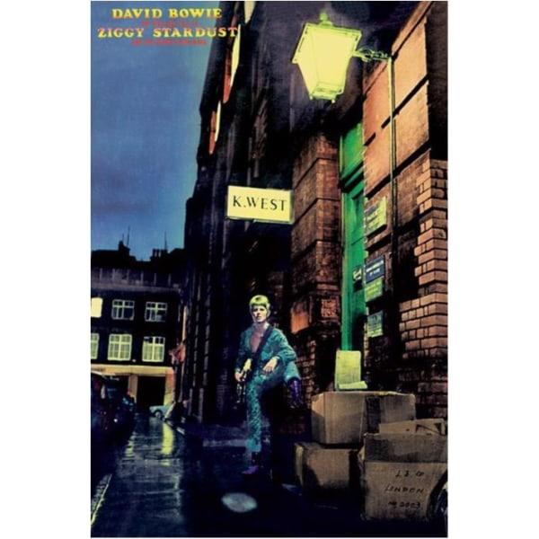 David Bowie - Ziggy Stardust multifärg