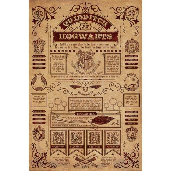 Harry Potter - Quidditch At Hogwarts multifärg