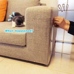 4: e Soffa Vägg Husdjur Katt Scratch Guard Shield Skydd 15*48cm 4pcs