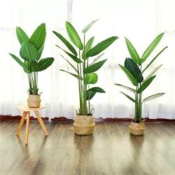 Konstväxt Banan växt 120 CM med svart kruka Grön