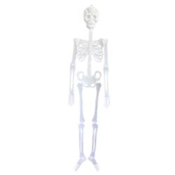 Skelett dekoration till halloween party självlysande fest transparent