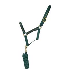Hy Elegant Stirrup And Bit Horse Headcollar och Leadrope Cob For Forest Green/Gold/Silver Cob