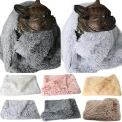 hund _ Husdjur hund katt säng valp mysig filt fluffigt hus sovande Pink S