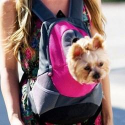 Pet Dog Puppy Ryggsäck Carrier Travel Front Net Väska Yellow S