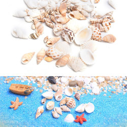 Naturliga strandskal Heminredning Snäckskal akvarium Micro Landsc E