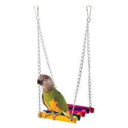 fåglar leksak husdjur fågel papegoja undulat undulat bur fågel hängande hamm Multicolor