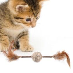 Katter Chew Toy Catnip Matatabi Molar Toy Cat Chew Sticks Health Foto färg 1