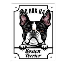 Plåtskylt Jag bo här Boston terrier Kikande hund skylt  Vit