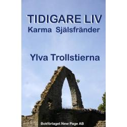 Tidigare liv : karma & själsfränder 9789189120532