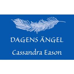 Dagens Ängel 9992090101488