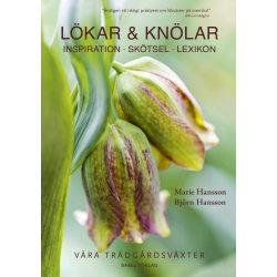 Lökar & Knölar : inspiration - skötsel - lexikon 9789198293333