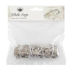 11cm Smudge . White Sage (Salvia)