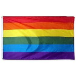 Stor Prideflagga / Regnbågsflagga