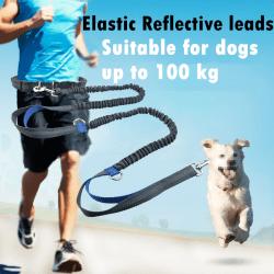 Utomhus sällskapsdjur hund kör koppel krage jogging bly justerbar Wa Orange