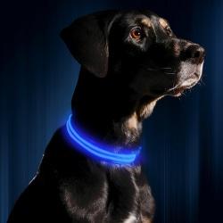 LED Pet Band - Large Blå
