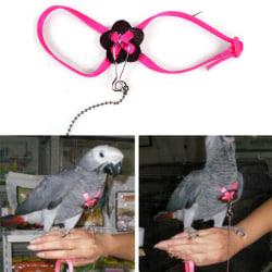 Papegojajusterbar fågelbälte och koppel Anti-bit Multicolor L