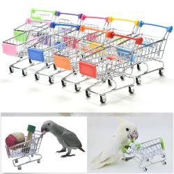 Papegoja Supermarket Kundvagn Barn Intelligens Tillväxt Rolig Red