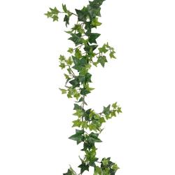 Murgröna 120 cm Grön