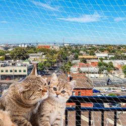 Ferplast Säkerhetsnät för katt 600x300 cm nylon L