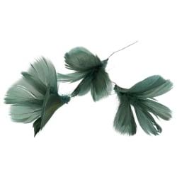 Fjäderblommor grönblå 12-pack