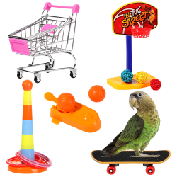 Parrot Toys Intelligence Training 4 Pieces