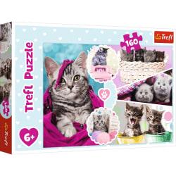 Trefl  Lovely kittens Pussel 160 bitar 15371