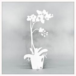 Orkidé - ETERNITY Dekoration 50cm Vit