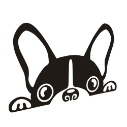 Dekal till bil - Nyfiken hund Svart
