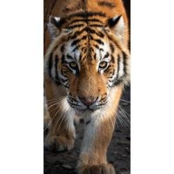 Tiger Badlakan/Handduk 70 x 140 cm multifärg
