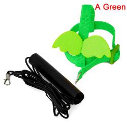 sällskapsdjur papegoja fågel sele koppel flygande rep remmar utomhus trainin A Green