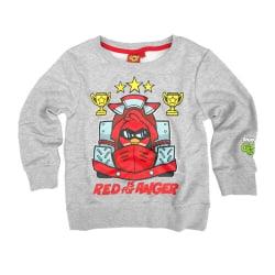 Angry Birds Sweatshirt 98