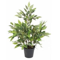 Konstväxt Ficus i kruka 55cm