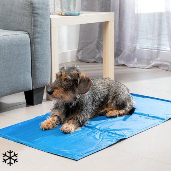 Kylmatta för Husdjur - 90 x 50cm