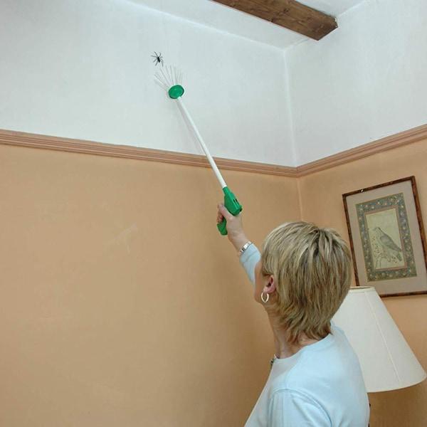 Fångar spindel skadedjur & critter kreativ kvalitet insekt bug mänskliga