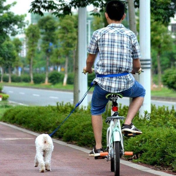 Koppel Hundkoppel Handsfree - Längd 95-168cm Svart