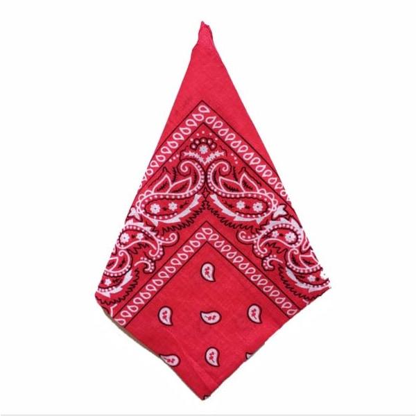 Bandana Paisleymönster Röd