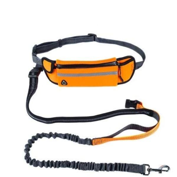 Flexibelt hundkoppel med magväska, Orange Orange