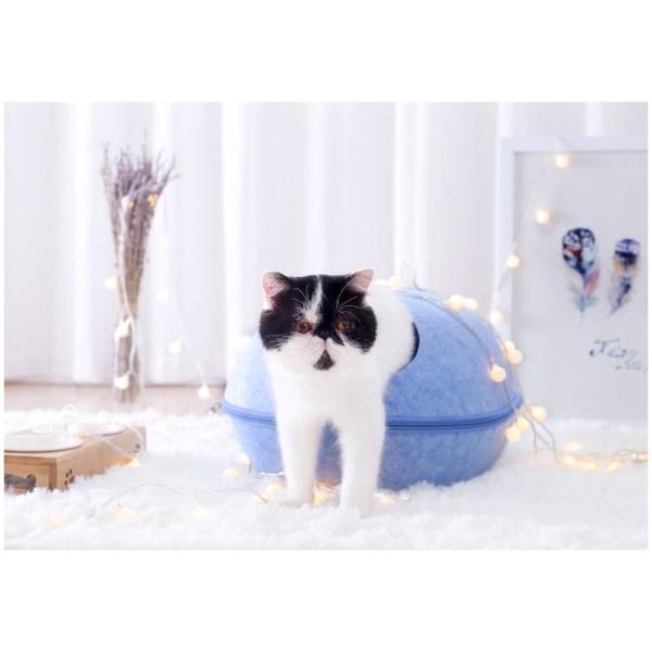 HooPet kissan peti tyynyllä, Sininen Blue